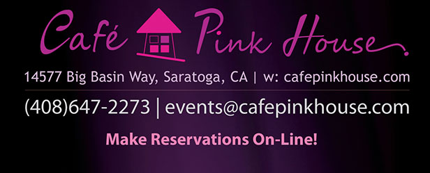 LIVE Offical Northern California CD Release Concerts - Studio Pink House